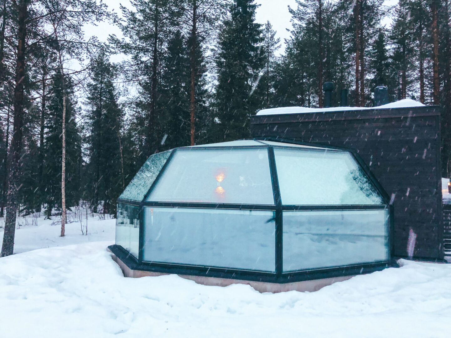 Snow falling on a glass igloo in front of a forest