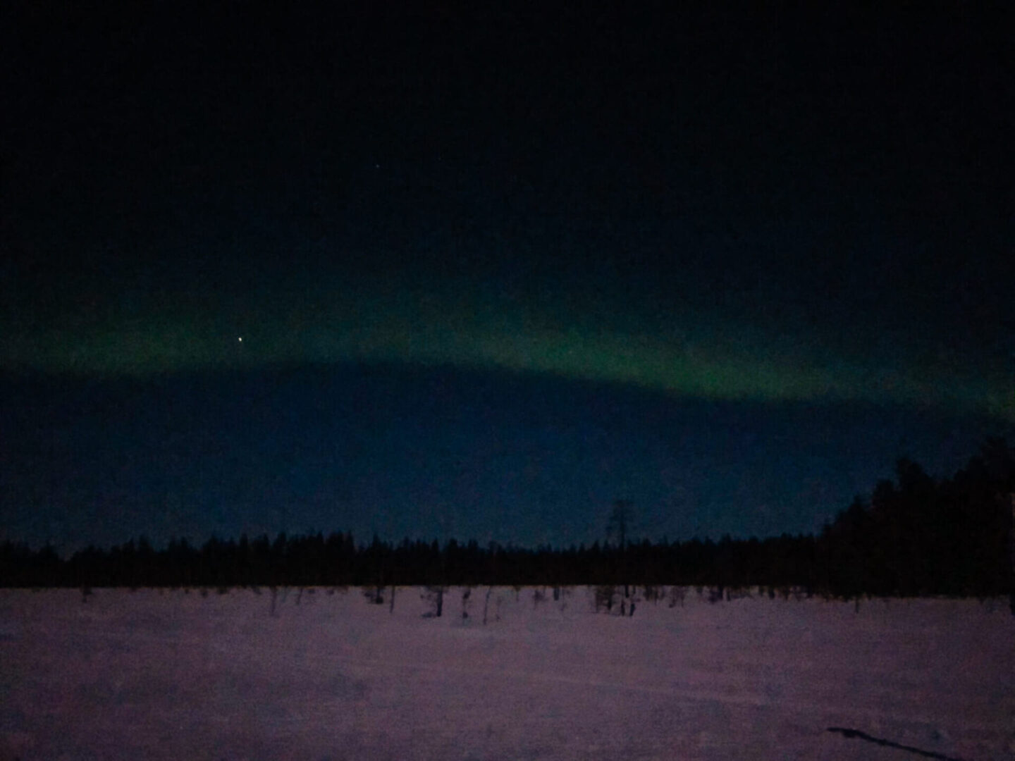 The northern lights over the snow