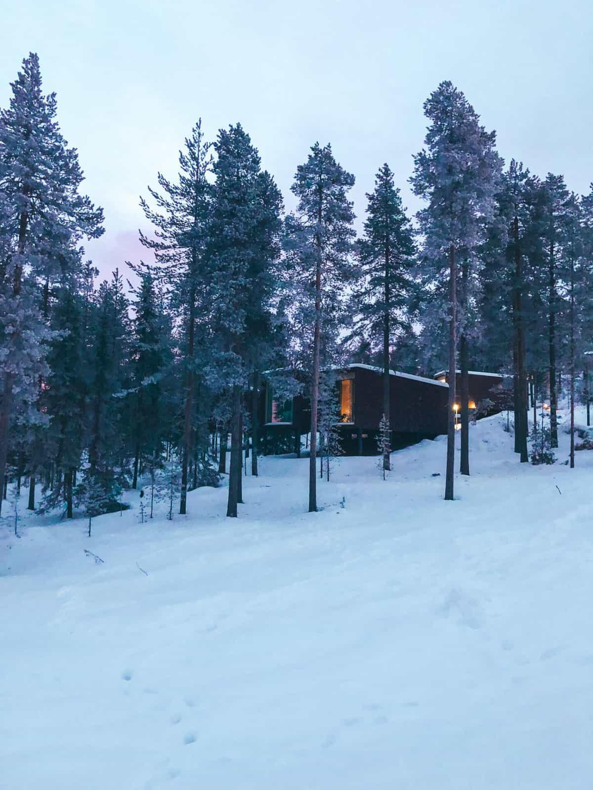 Rectangle rooms in a snowy forest surrounded by snow