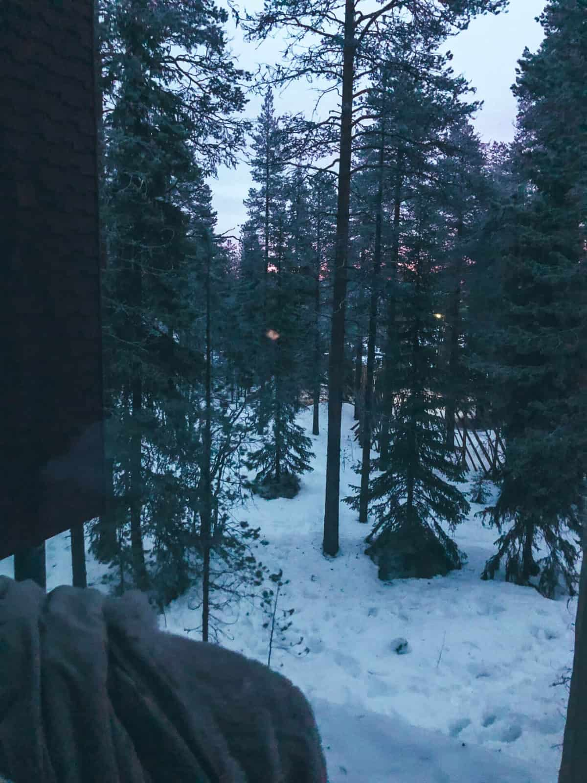 The edge of a bed looking out on to a snowy forest