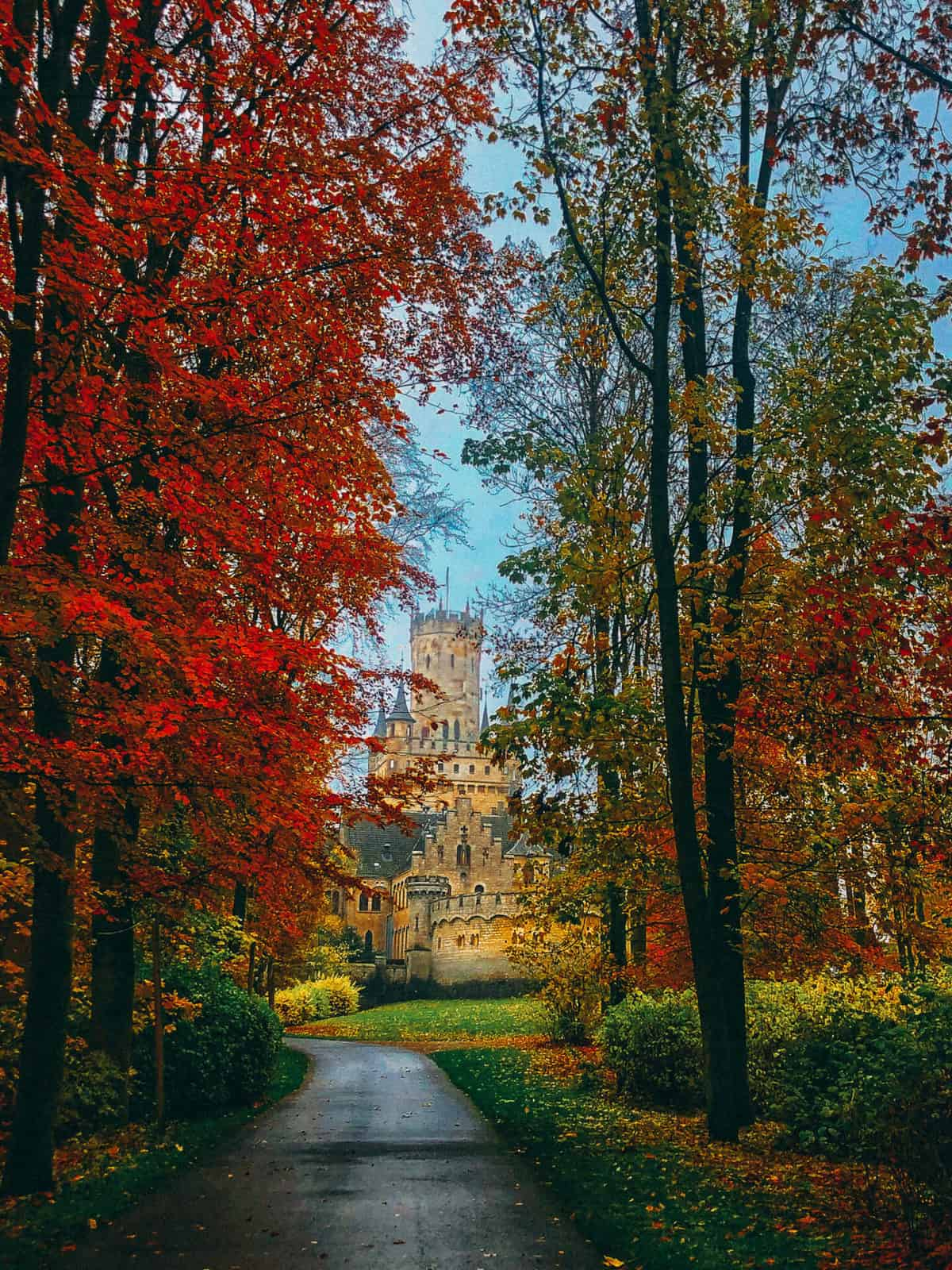 A path lined with autumn leaves leading up to a castle