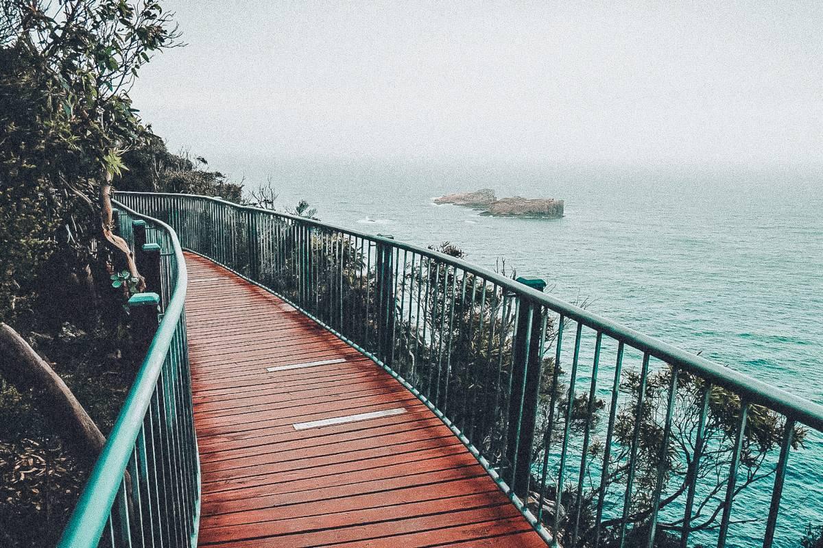A board walk overlooking the ocean