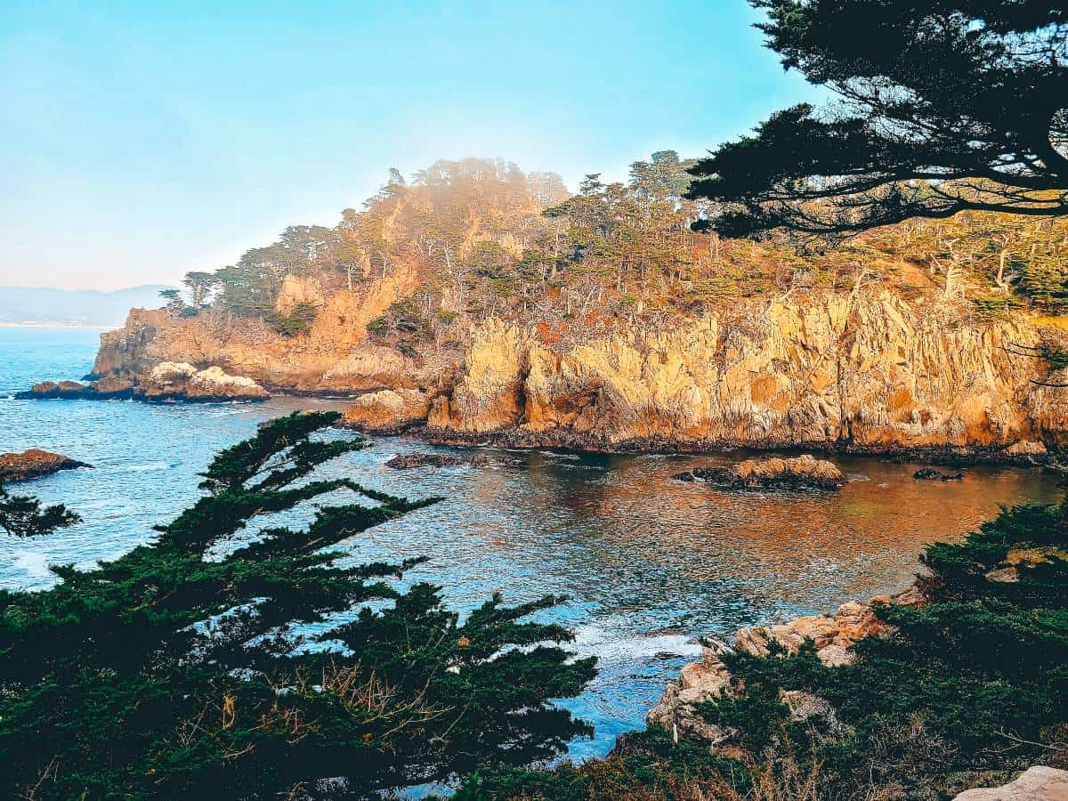 Overlooking a cliff beside the ocean