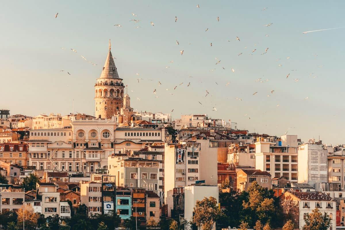 Birds flying over an old European city