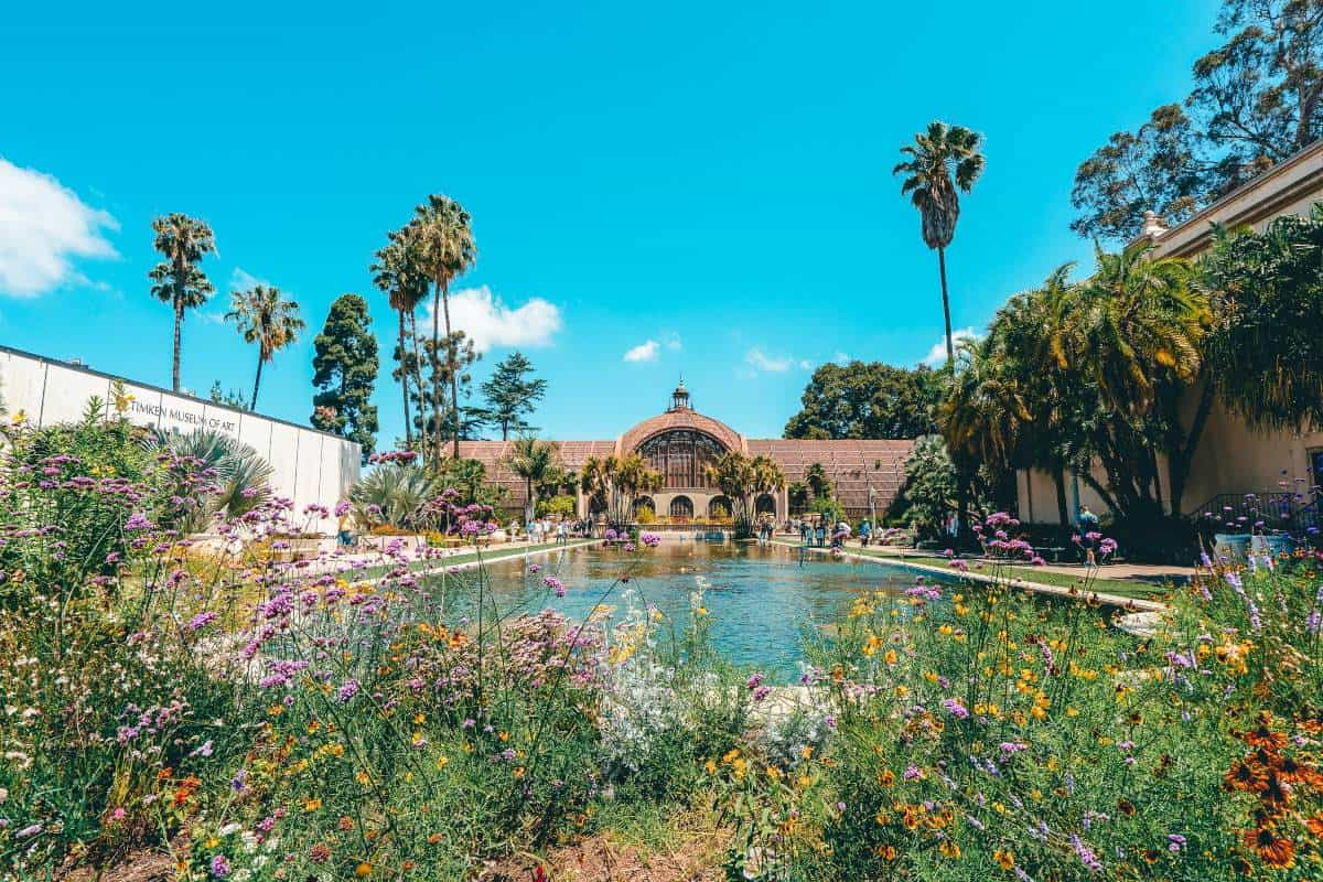 Colourful flowers in front of a swimming pool surrounded by palm trees