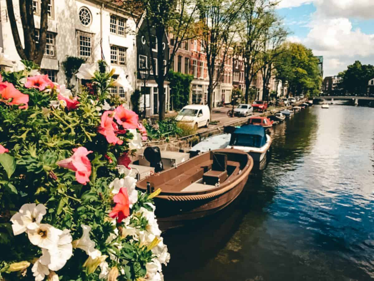 A photo with flowers in the foreground and boats on a canal lined with colourful buildings.