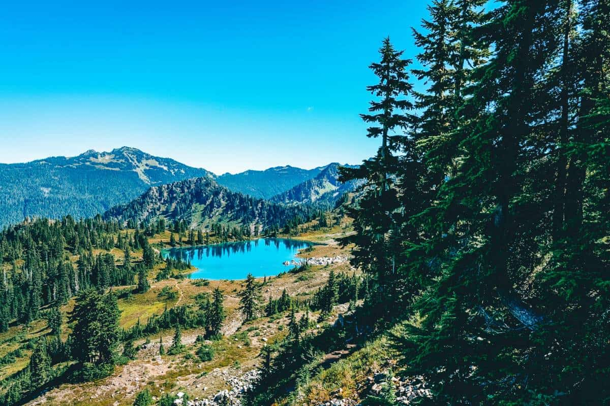 A bright blue lake surrounded mountains lined with pine trees
