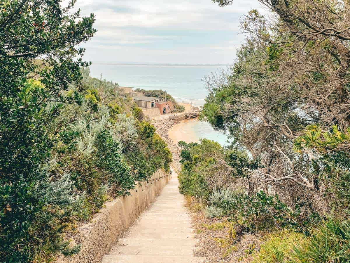 Steep shrub lined steps leading down to ruins on the beach
