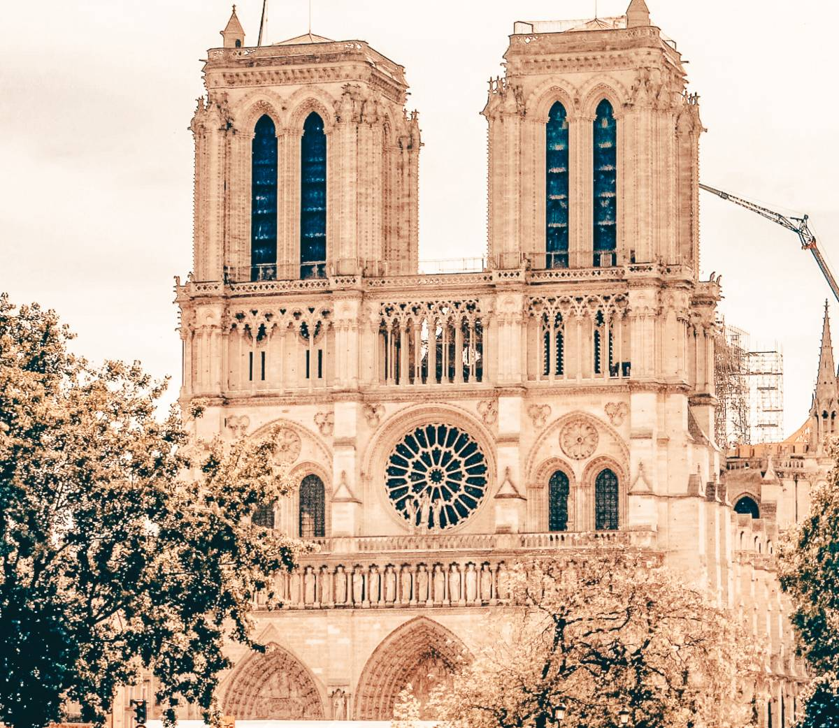 The notre dame cathedral during the day