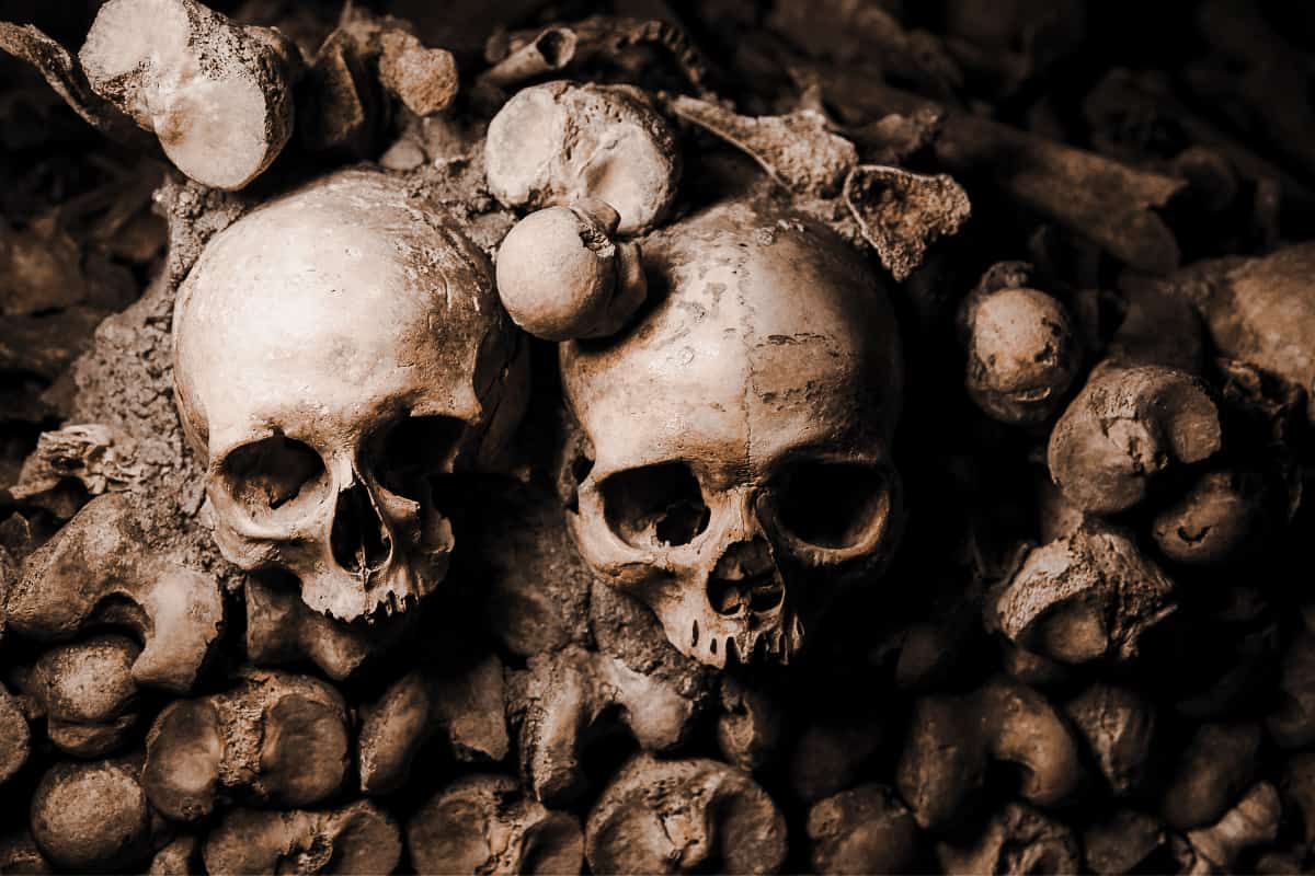 Skulls and bones lining a wall at the Catacombs in Paris