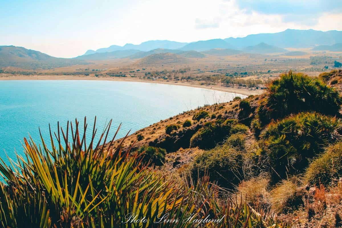 A view through the shrubs to the ocean at Cabo de Gata
