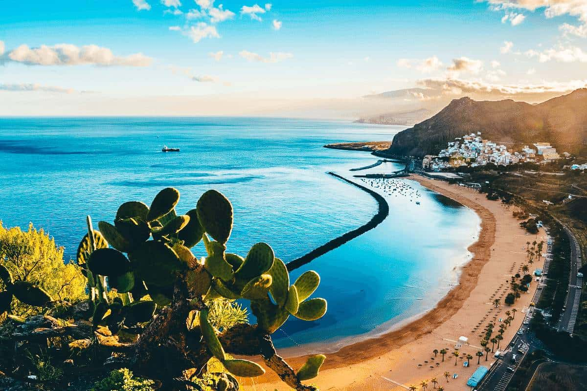 A view from behind a bush over the view of a beach at Tenerife