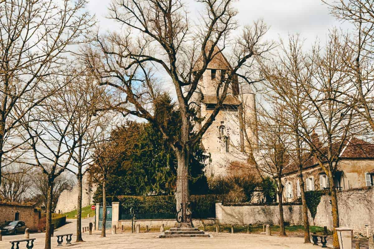 A courtyard lined with trees in Provins