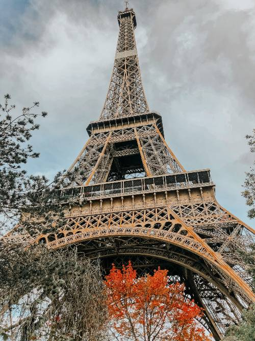 The Eiffel Tower surrounded by autumn leaves