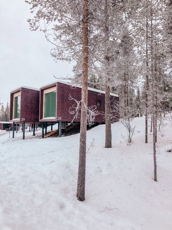 Two rectangle box rooms in the snow surrounded by snowy trees
