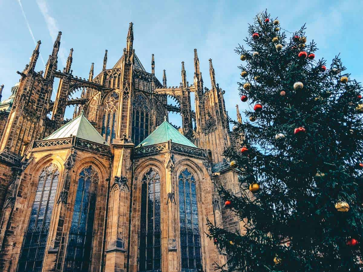 A large Christmas tree in front of an old Cathedral in Prague