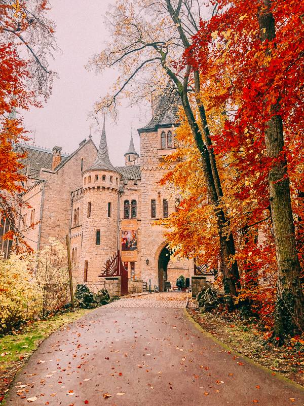 Autumn leaves in front of the entrance to Schloss Marienburg Castle