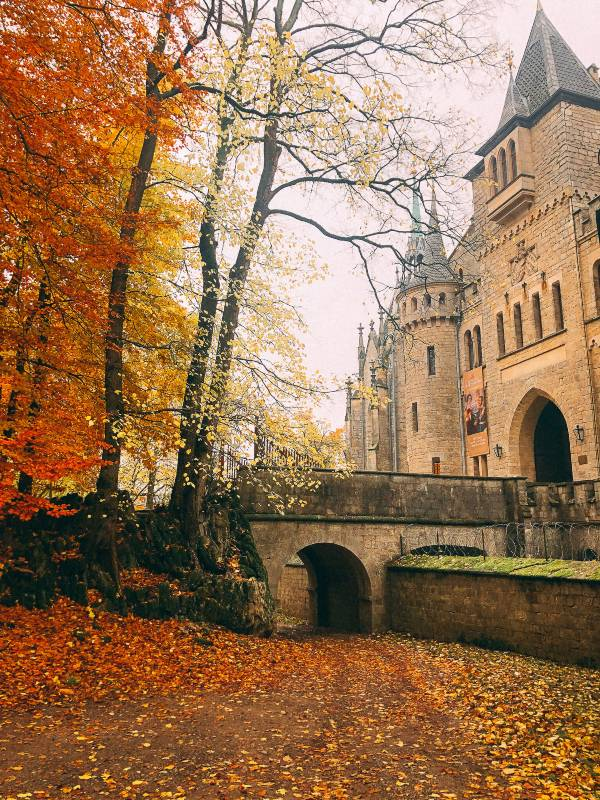 Autumn leaves surrounding the bridge crossing to schloss marienburg