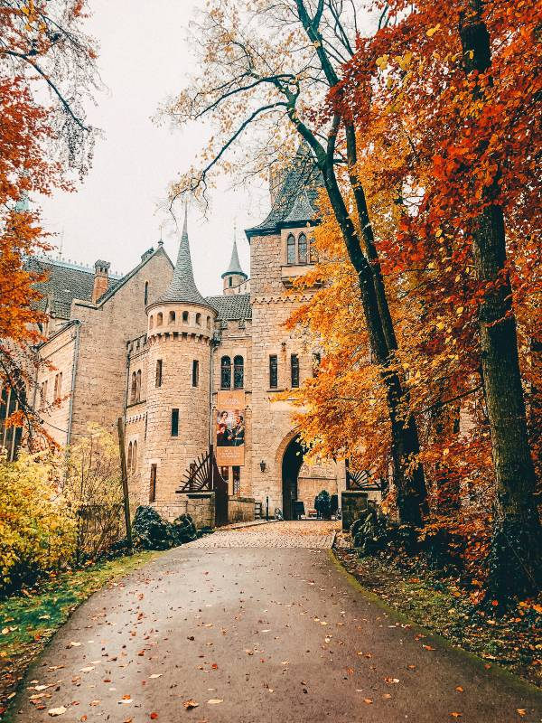 Marienburg Castle near Hannover covered with autumn leaves