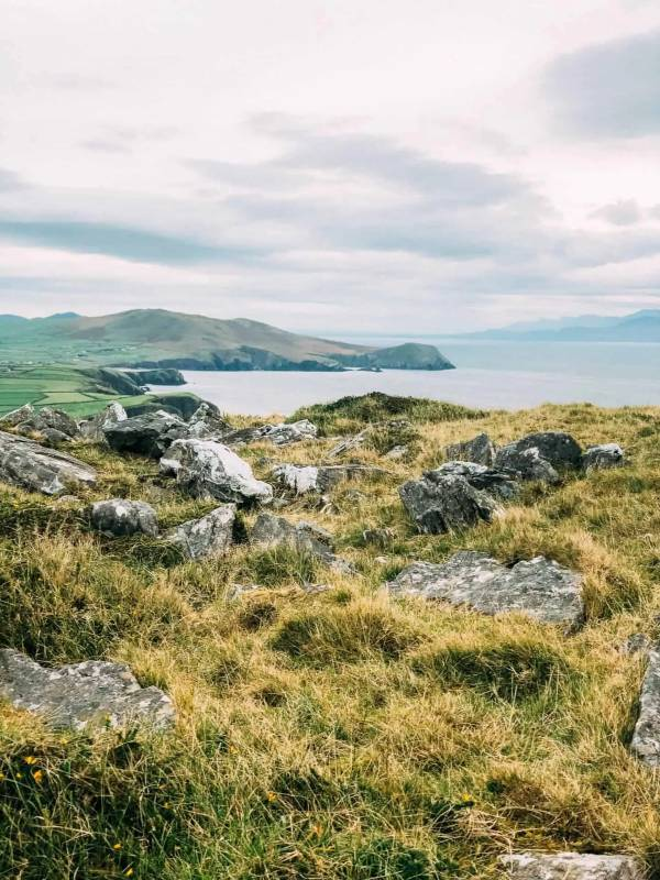 Views of Dingle Harbour across green grass from Carhoo Hill