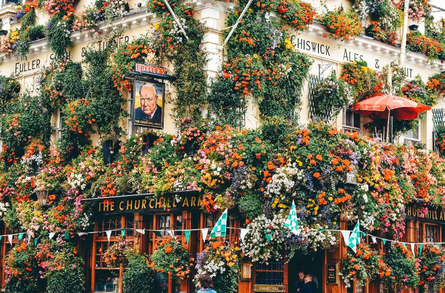 The Churchill Arms in London covered in flowers in the spring