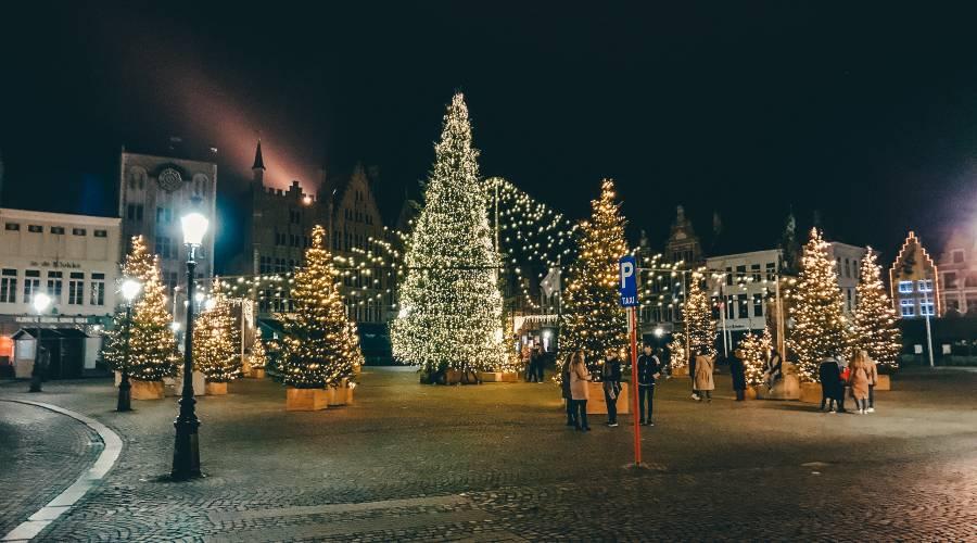 Christmas trees in the main square in Brugge, Belgium