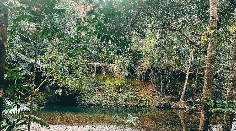 Emmagen Creek Swimming hole