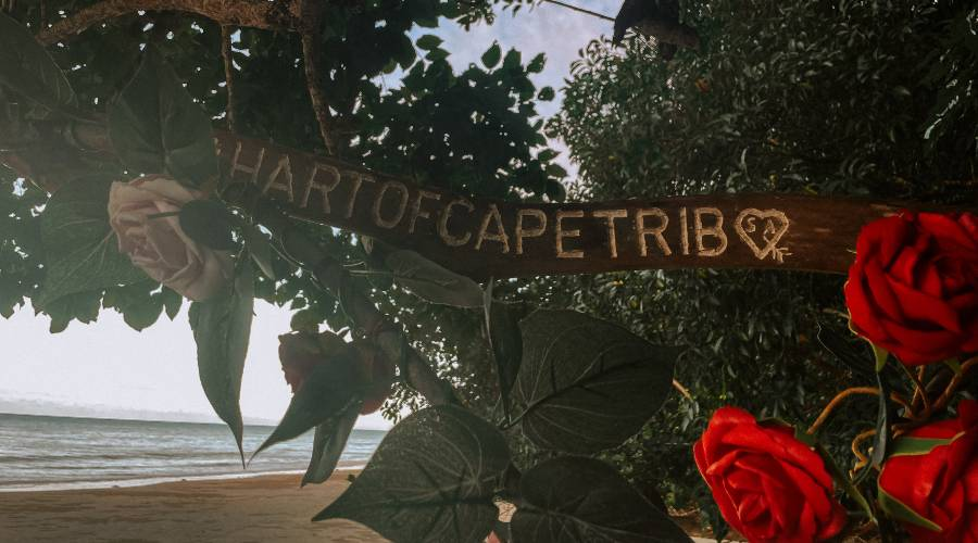 A sign reading the hart of cape trib covered in flowers